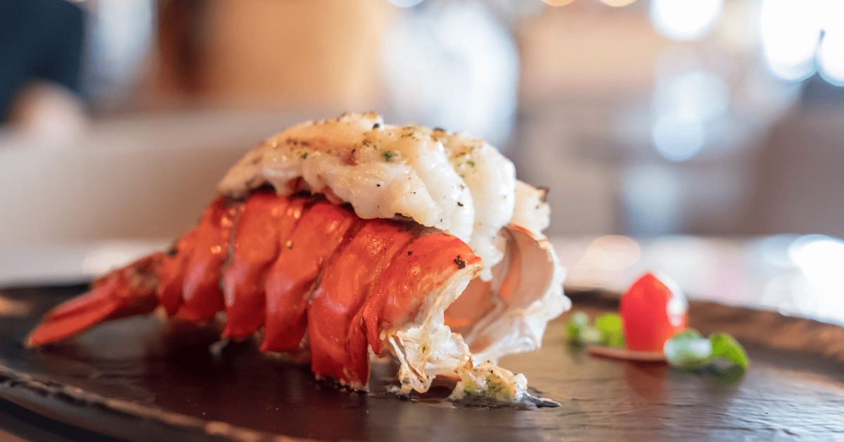 Lobster tail on a plate of one of the top Restaurants in Boynton Beach and Delray Beach